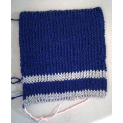 HP PoA scarf swatch